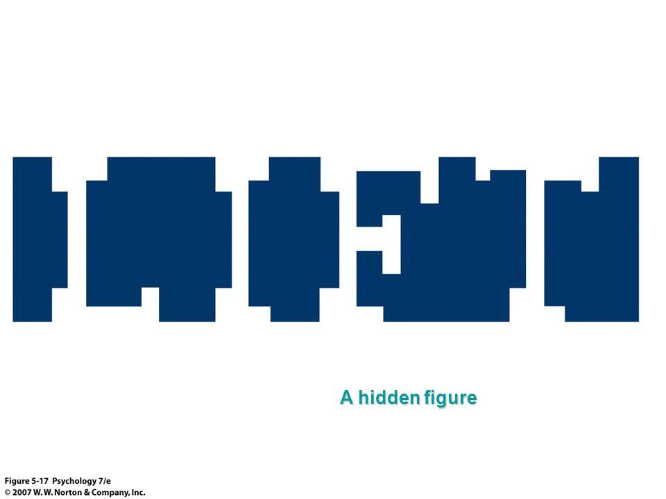 A hidden figure