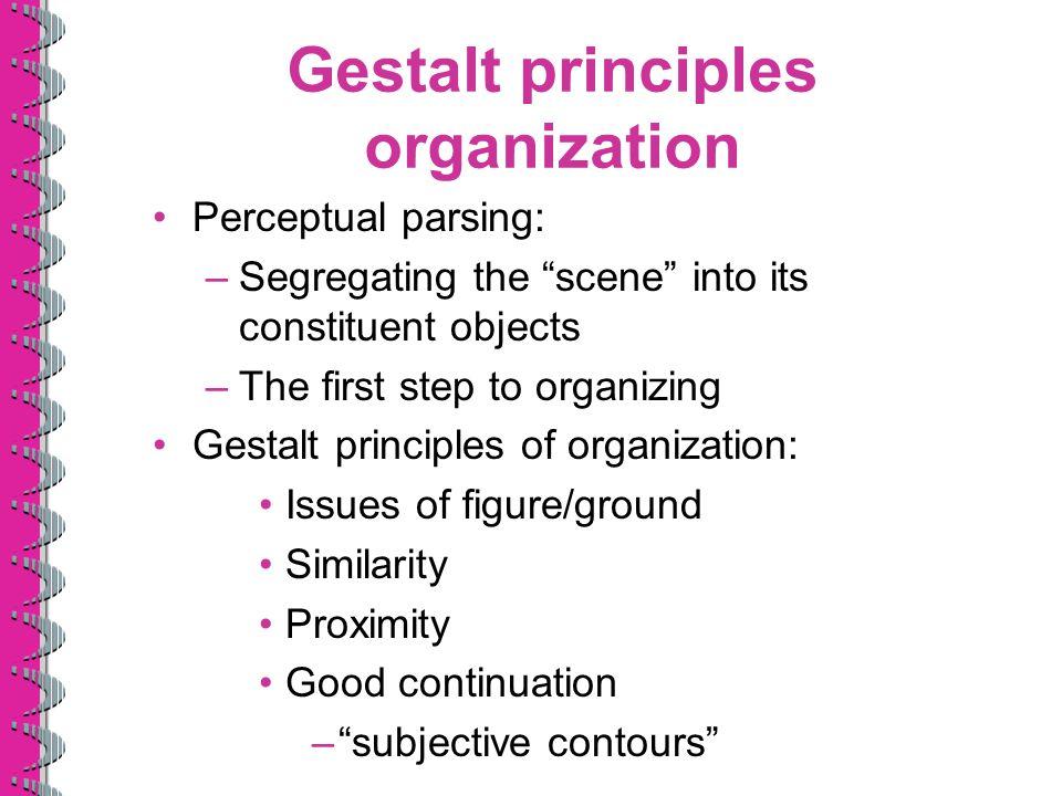 Gestalt principles organization
