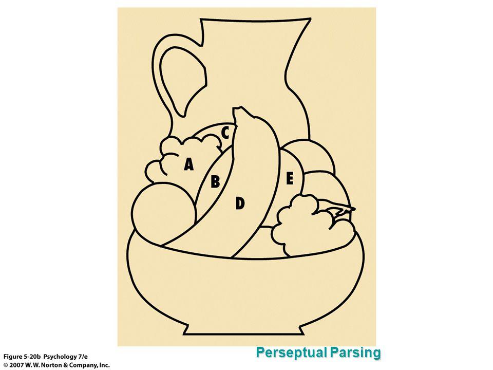 Perseptual Parsing