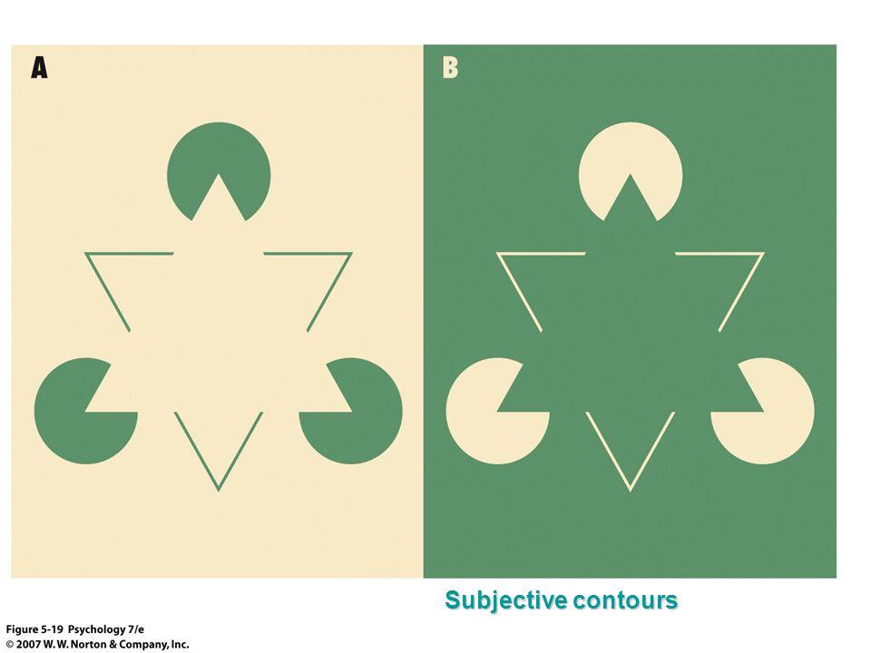 Subjective contours