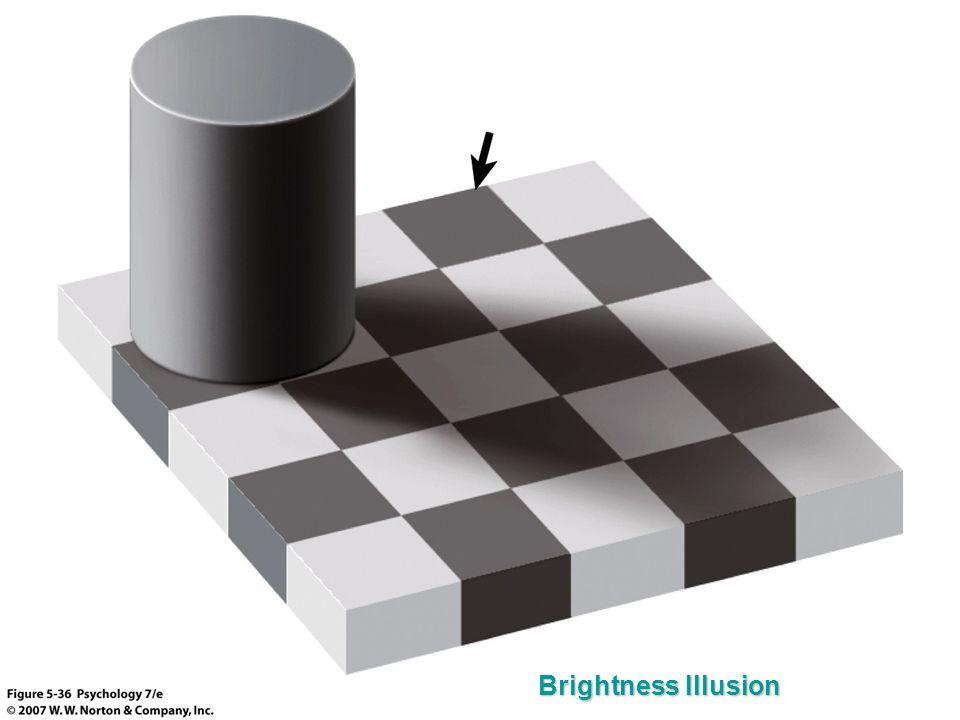 Brightness Illusion