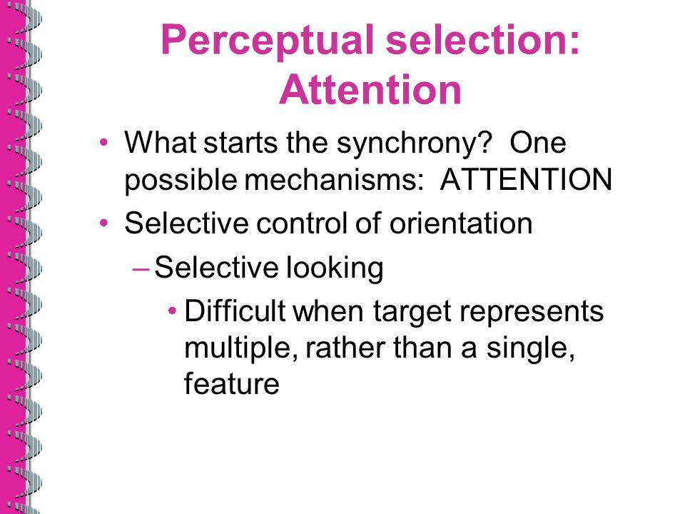 Perceptual selection: Attention