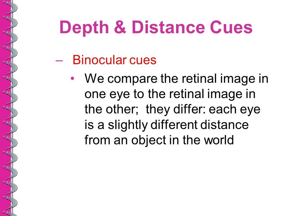 Depth & Distance Cues Binocular cues