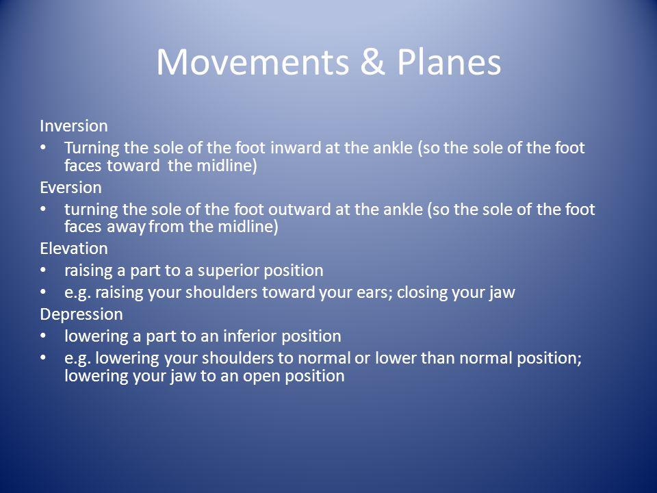 Movements & Planes Inversion