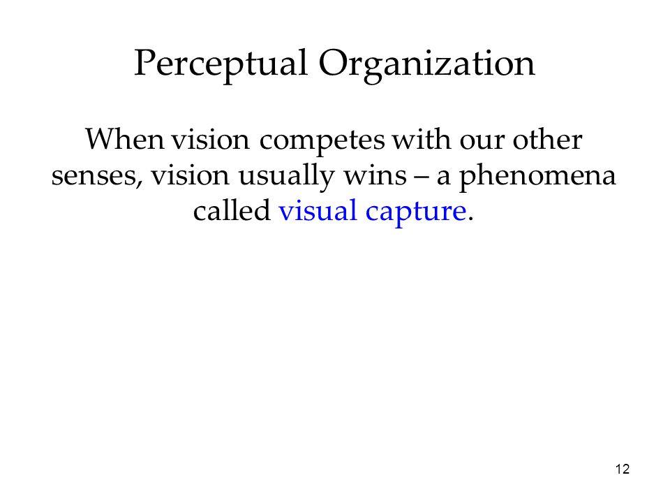 organization in vision essays on gestalt perception Gestalt psychology and perception essay perception is based on the organization of stimuli the study of visual perception according to gestalt.