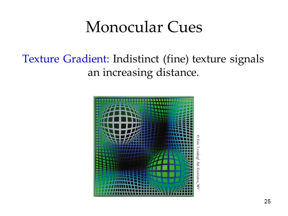 Monocular Cues Texture Gradient: Indistinct (fine) texture signals an increasing distance.