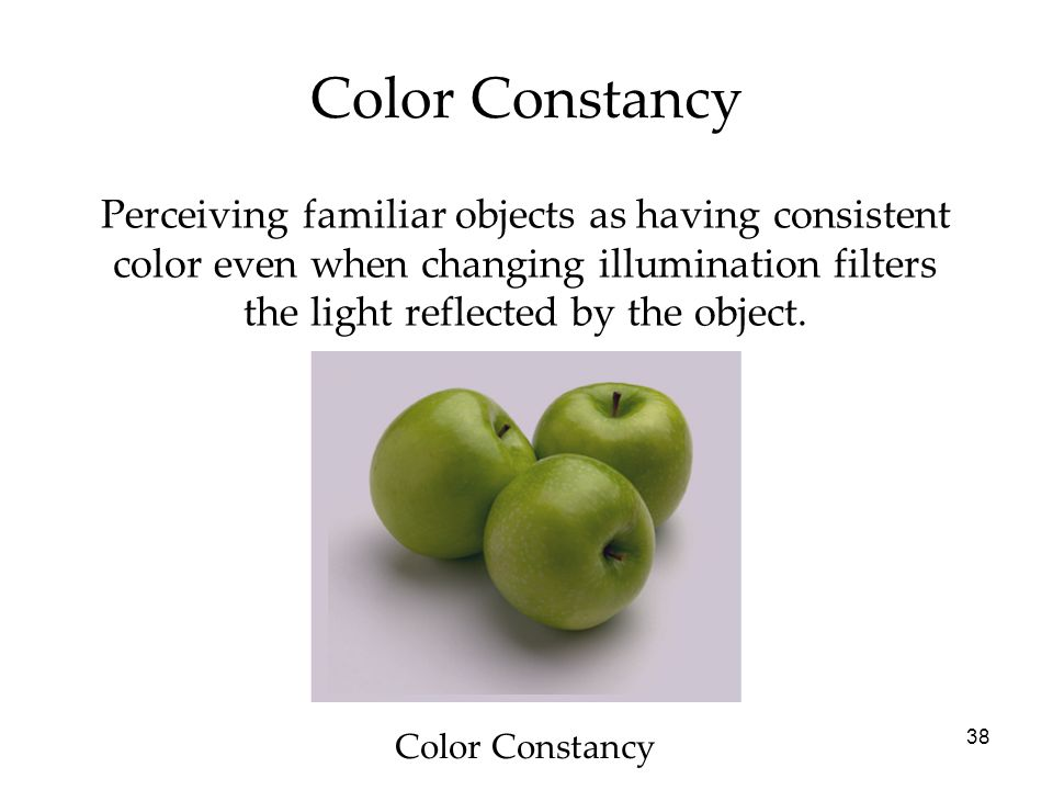 Color Constancy Perceiving familiar objects as having consistent color even when changing illumination filters the light reflected by the object.