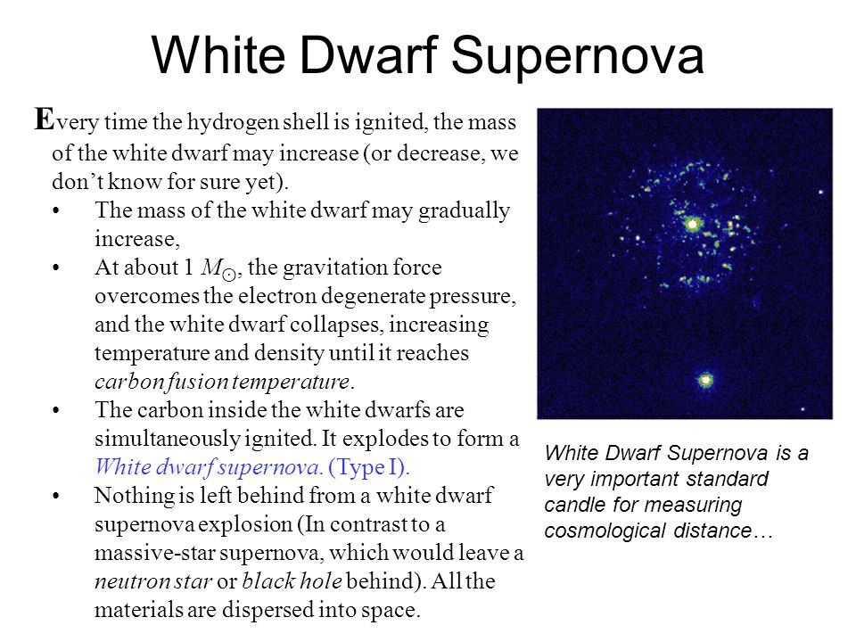 White Dwarf Supernova Every time the hydrogen shell is ignited, the mass of the white dwarf may increase (or decrease, we don't know for sure yet).