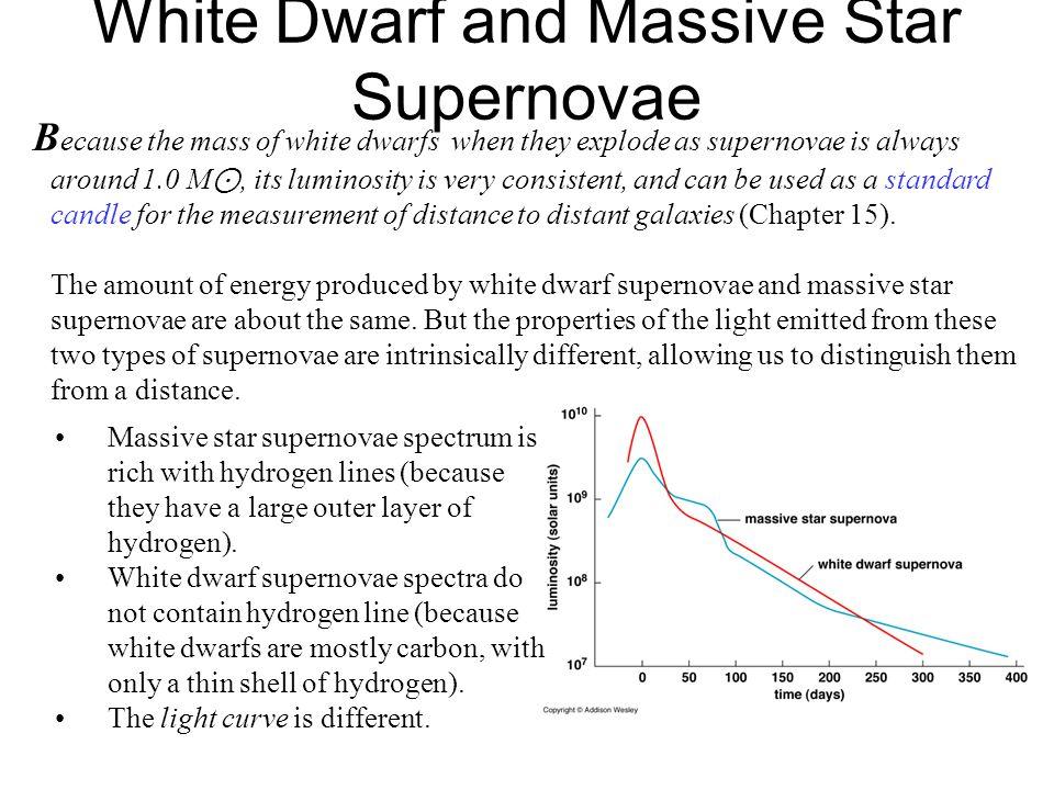 White Dwarf and Massive Star Supernovae