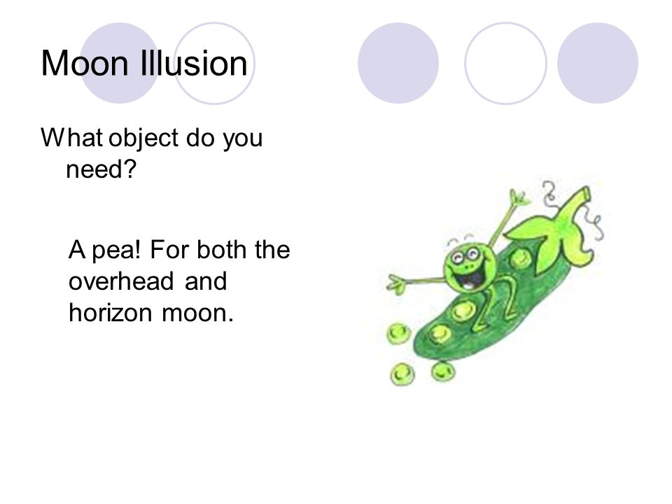 Moon Illusion What object do you need