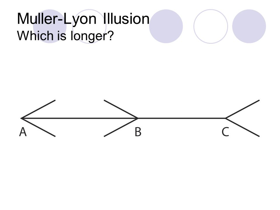 Muller-Lyon Illusion Which is longer