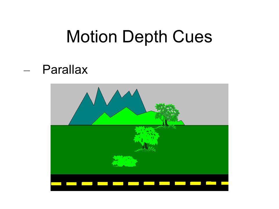 Motion Depth Cues Parallax