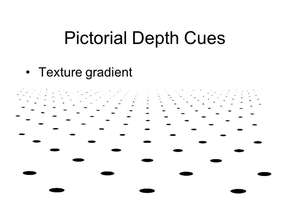 Pictorial Depth Cues Texture gradient