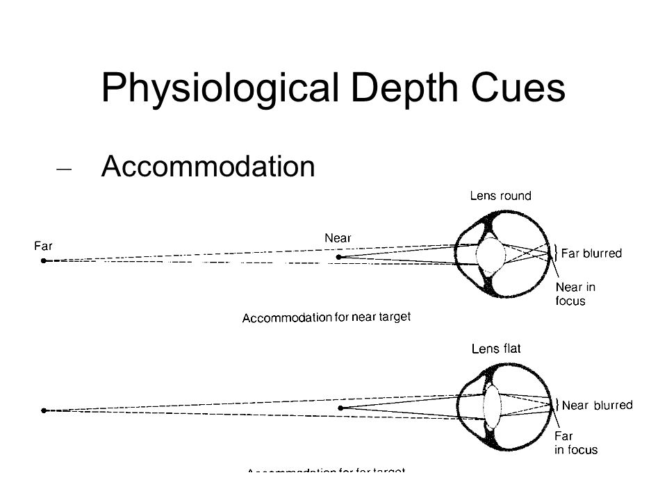 Physiological Depth Cues