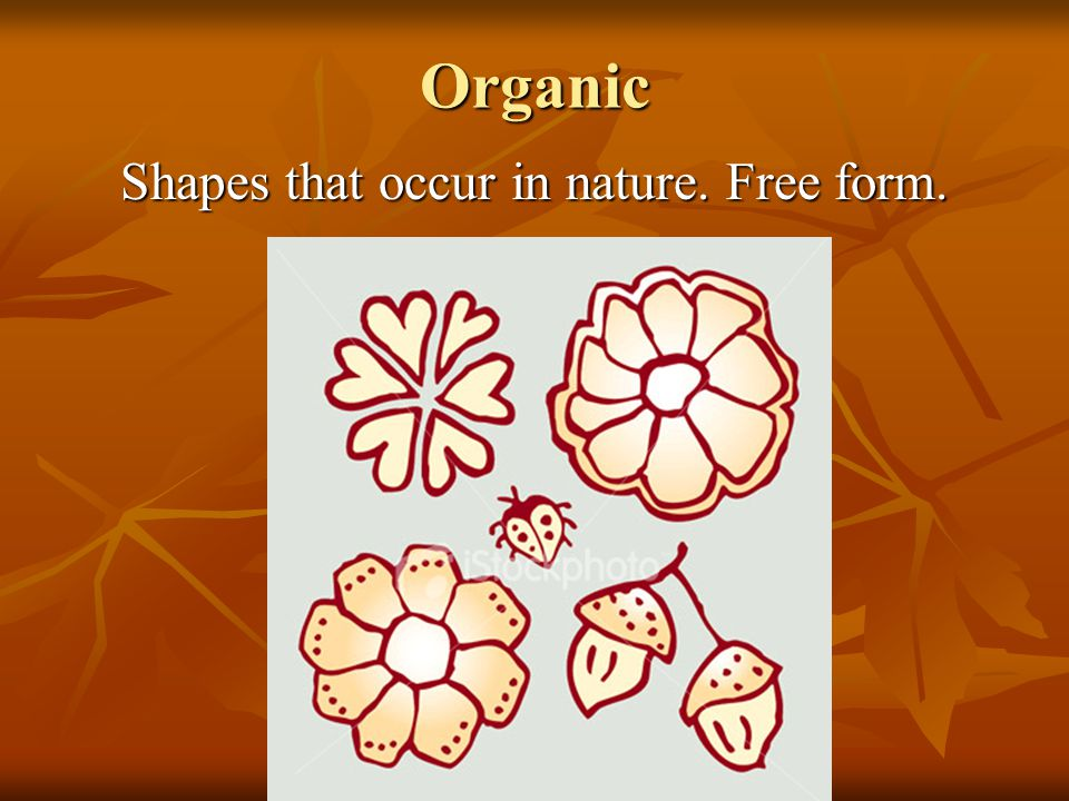 Shapes that occur in nature. Free form.