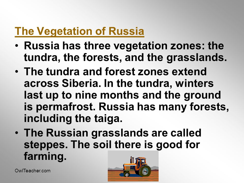 The Vegetation of Russia