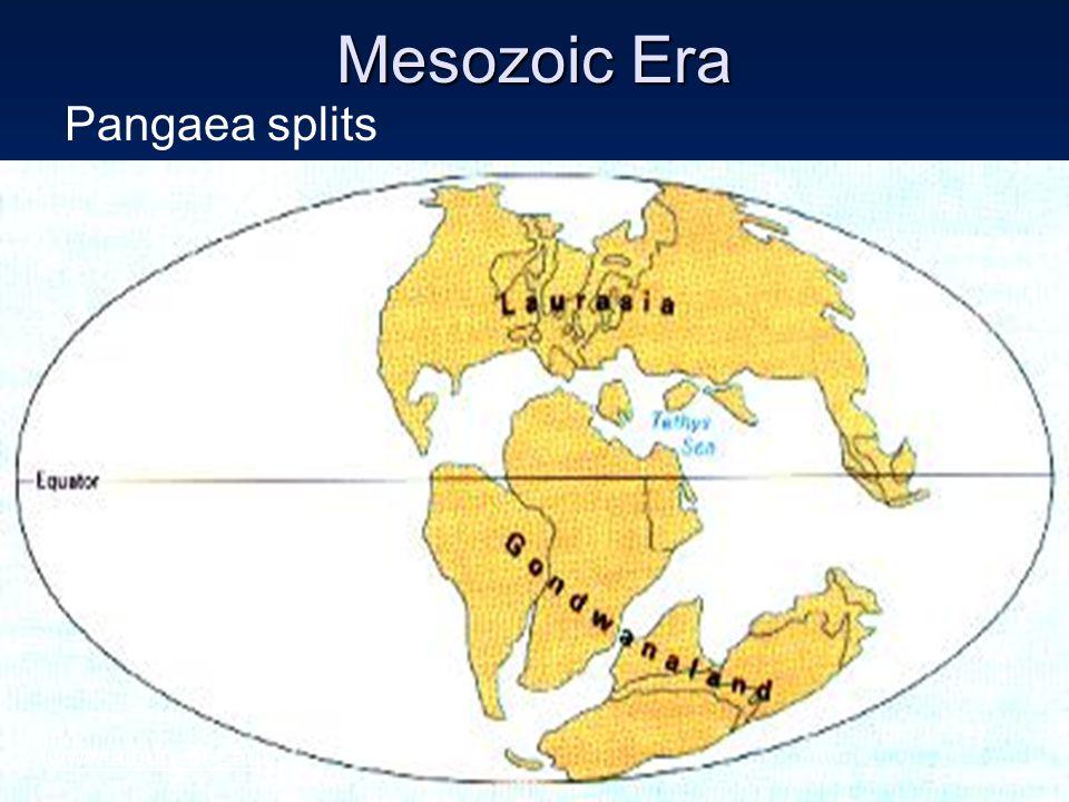 Mesozoic Era Pangaea splits www.albury.net.au