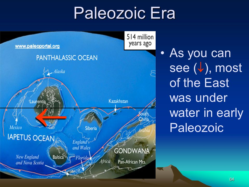 Paleozoic Era www.paleoportal.org. As you can see (), most of the East was under water in early Paleozoic.