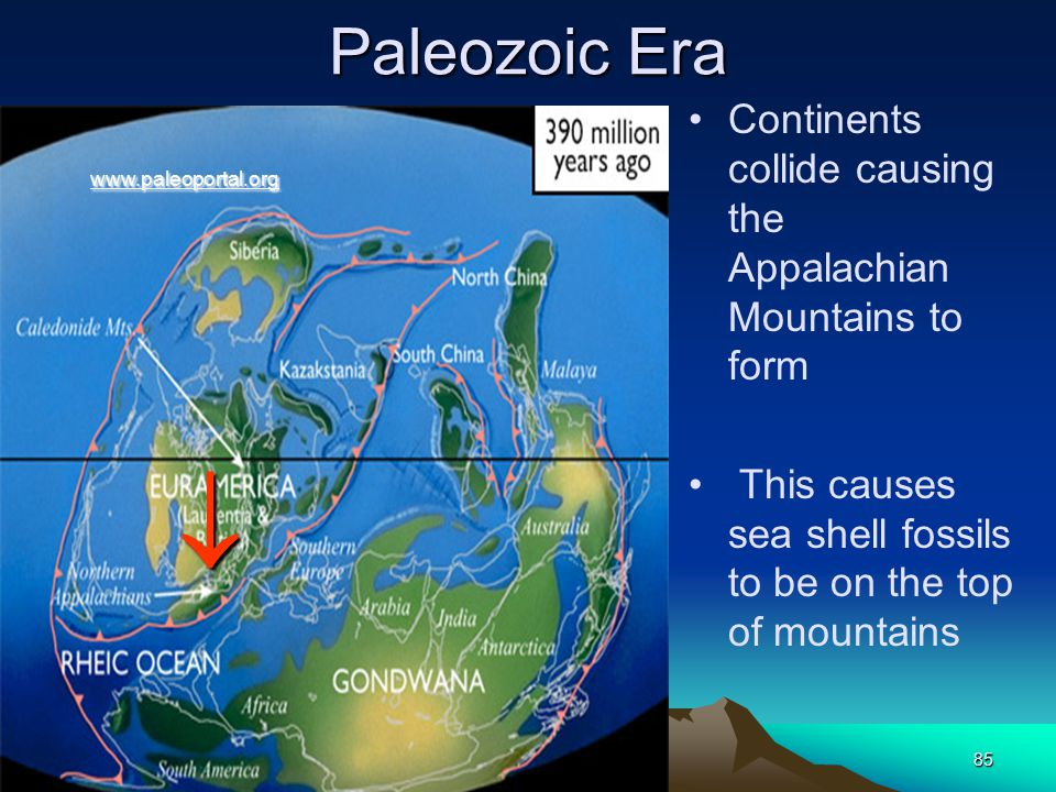 Paleozoic Era Continents collide causing the Appalachian Mountains to form. This causes sea shell fossils to be on the top of mountains.