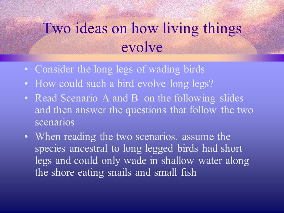 Two ideas on how living things evolve
