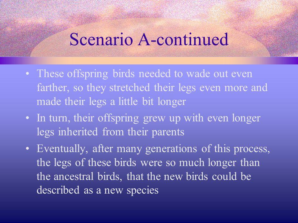 Scenario A-continued