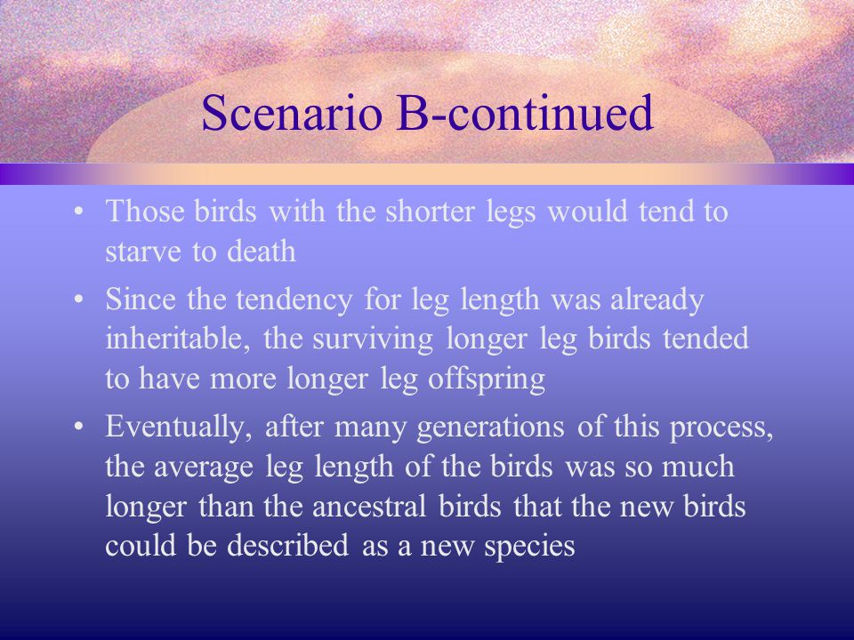 Scenario B-continued Those birds with the shorter legs would tend to starve to death.