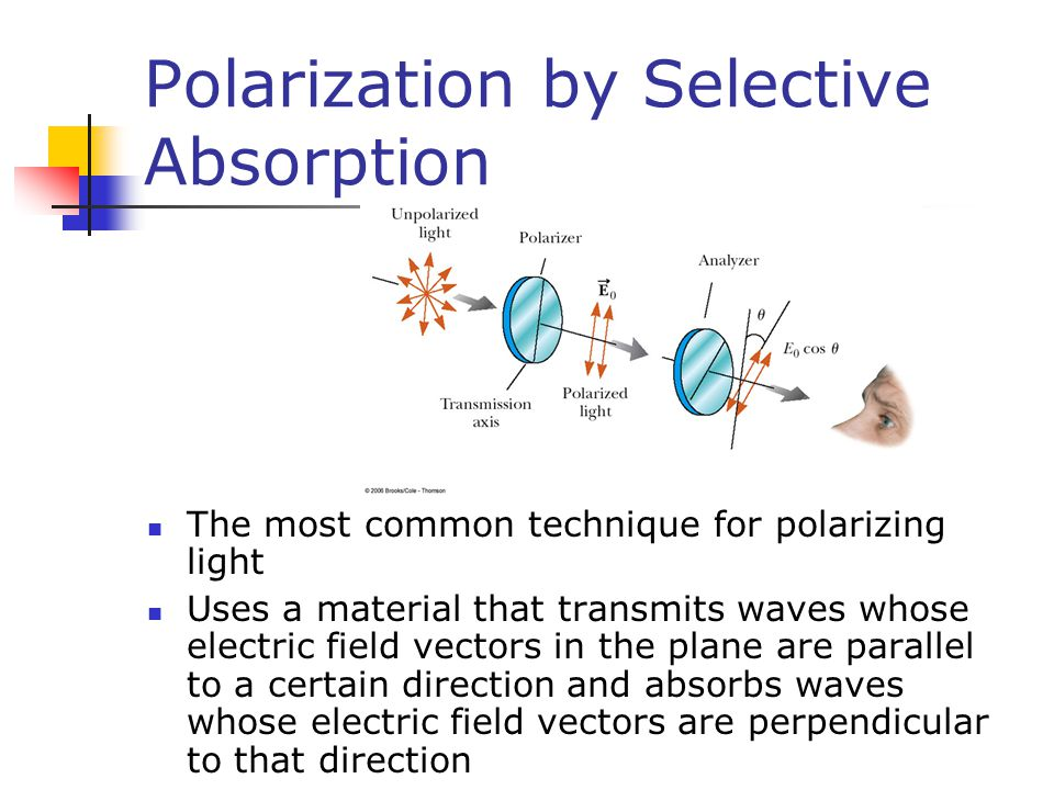 Polarization by Selective Absorption