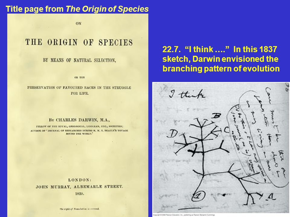 Title page from The Origin of Species
