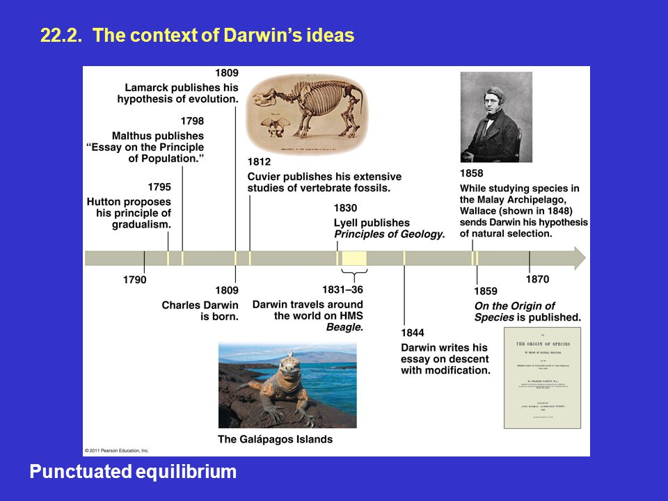 22.2. The context of Darwin's ideas