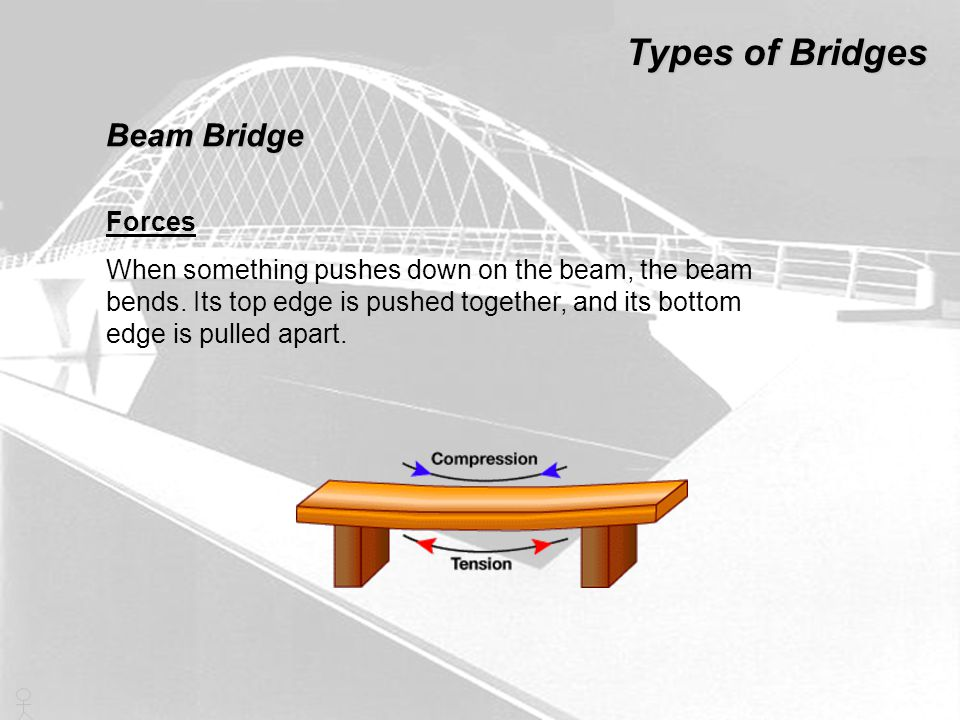 Types of Bridges Beam Bridge Forces