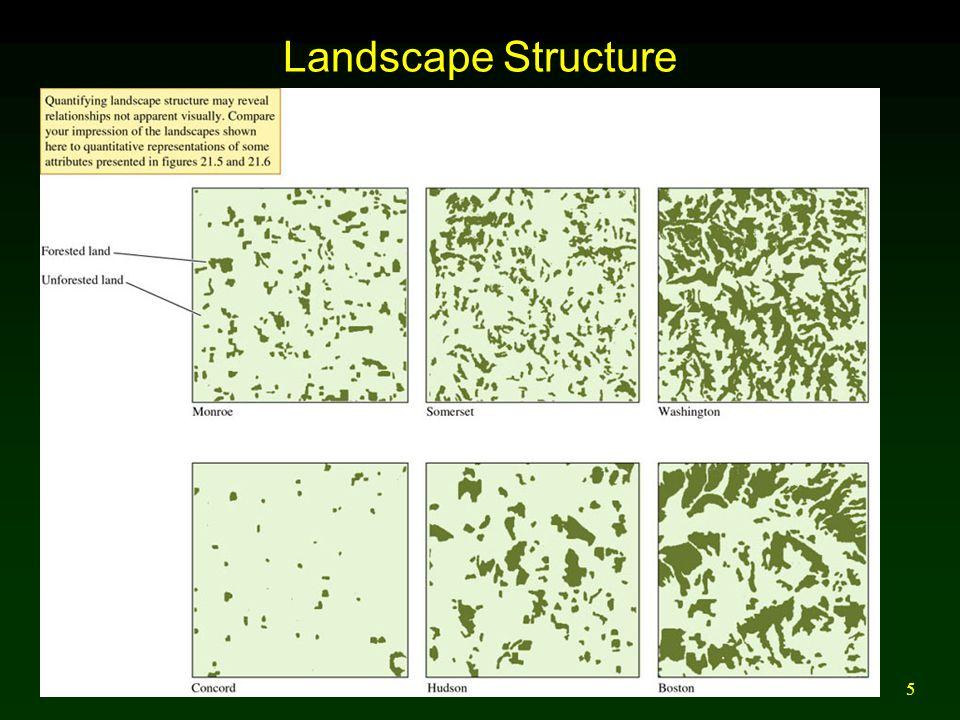 Landscape Structure