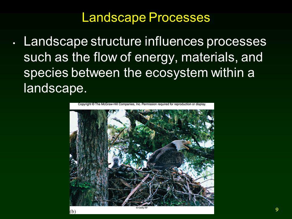 Landscape Processes