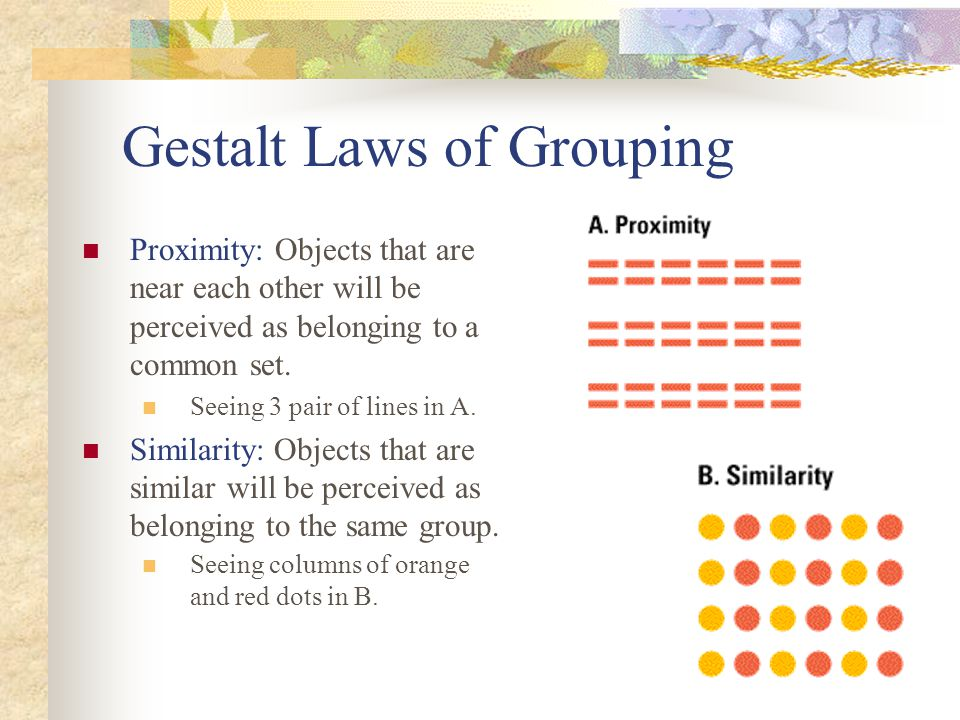Gestalt Laws of Grouping