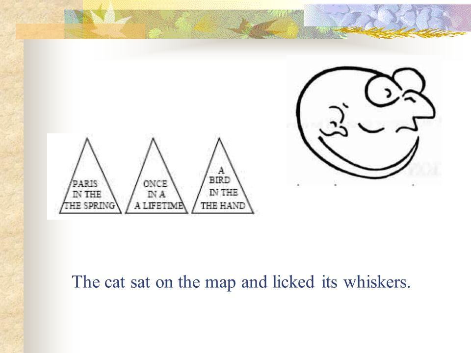 The cat sat on the map and licked its whiskers.