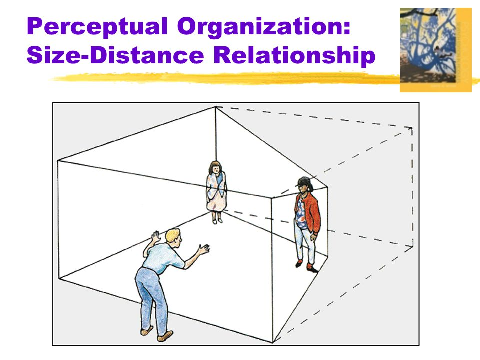 Perceptual Organization: Size-Distance Relationship