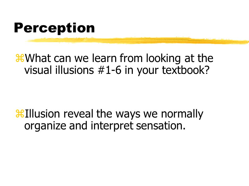 Perception What can we learn from looking at the visual illusions #1-6 in your textbook