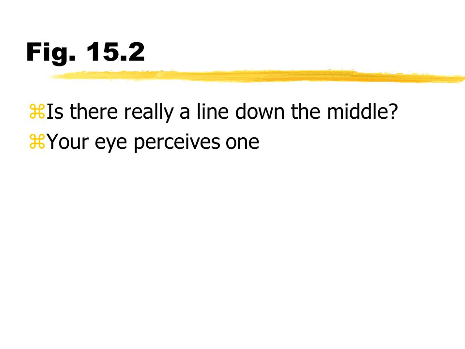 Fig. 15.2 Is there really a line down the middle
