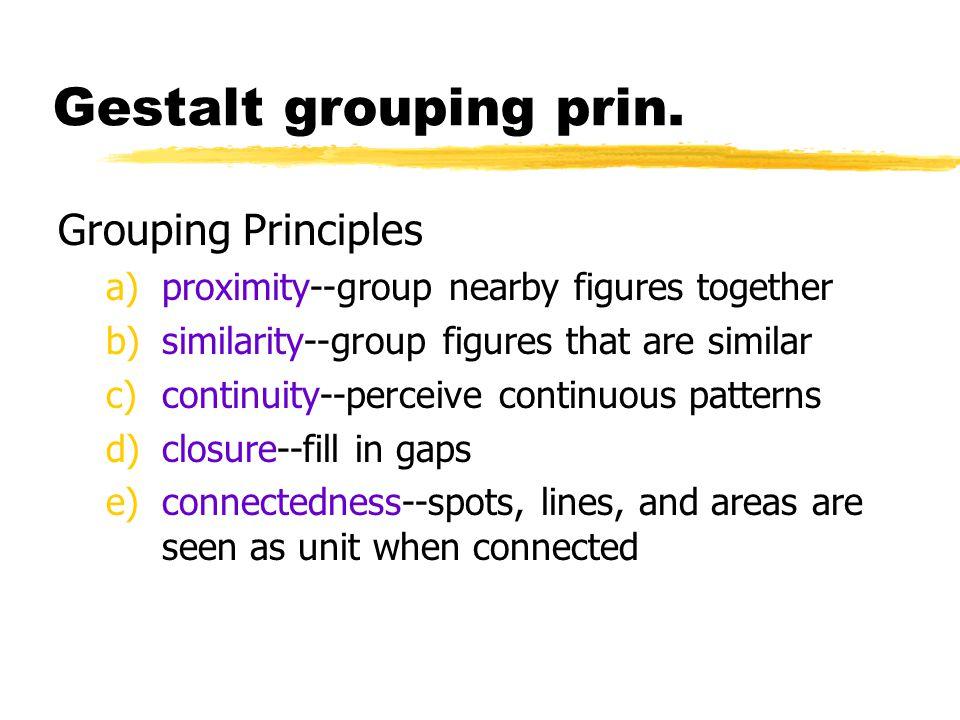 Gestalt grouping prin. Grouping Principles