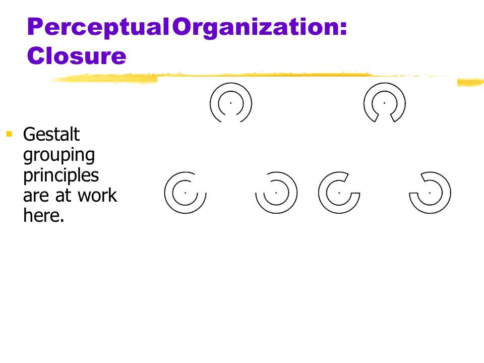 Perceptual Organization: Closure