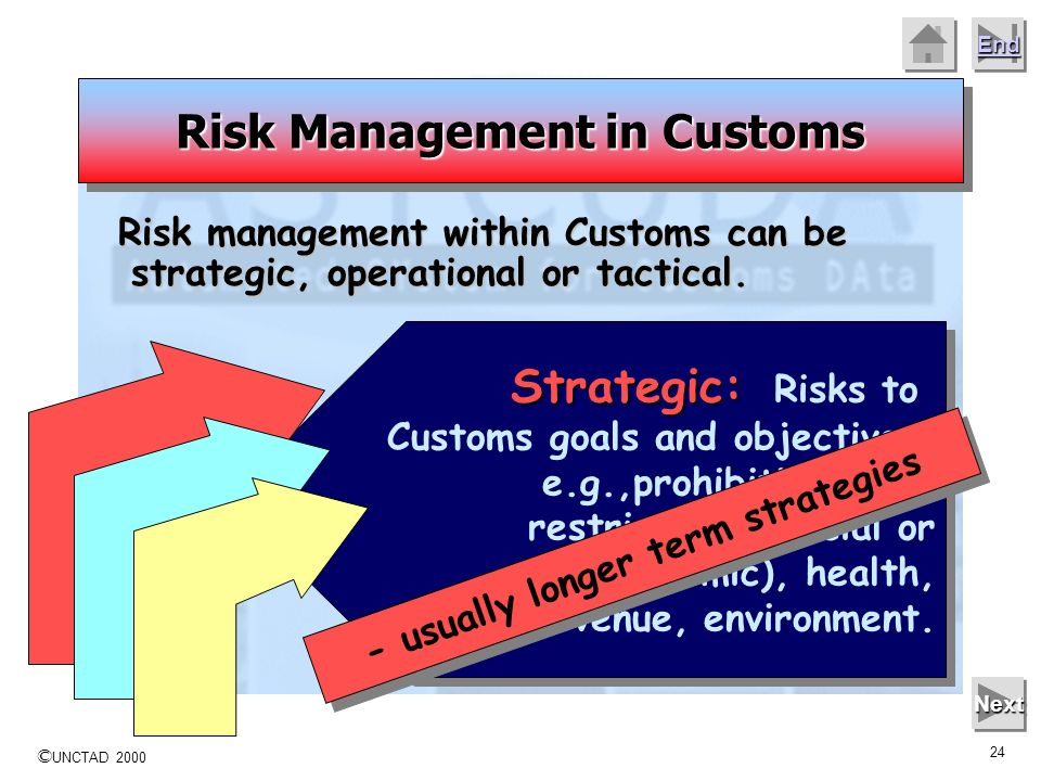 Risk Management in Customs - usually longer term strategies