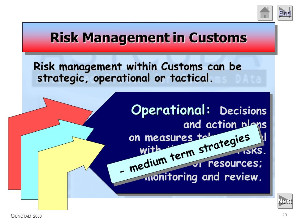 Risk Management in Customs - medium term strategies