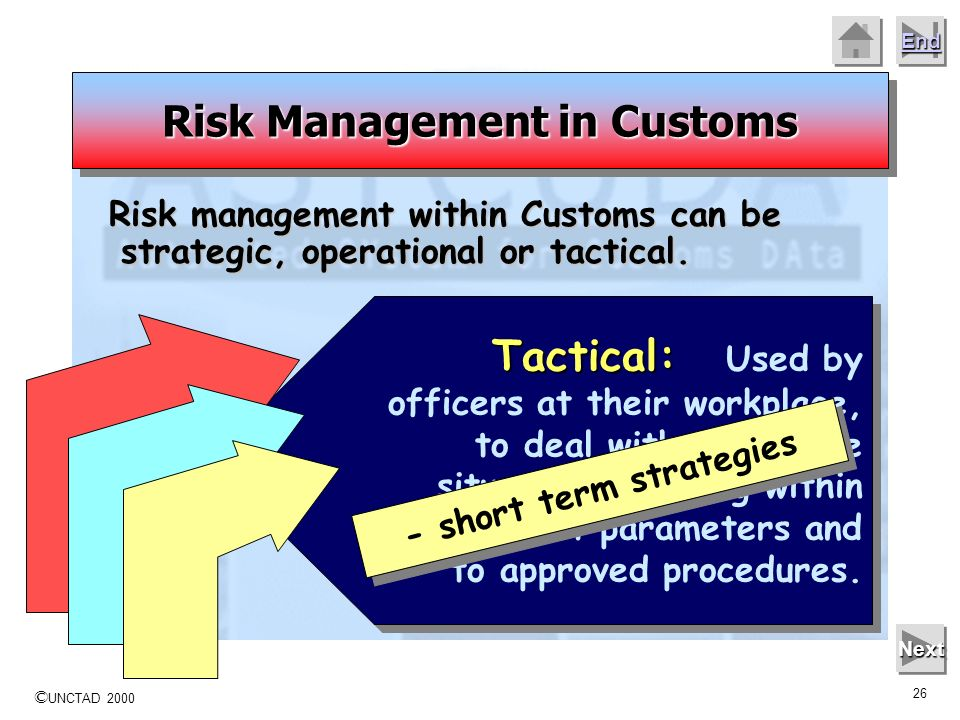 Risk Management in Customs - short term strategies
