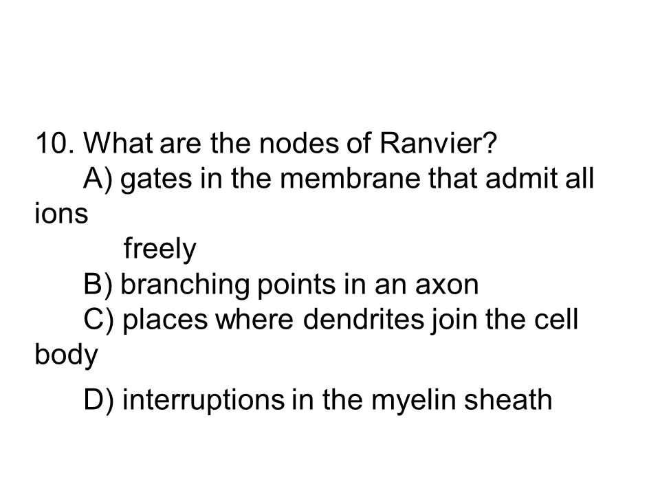 10. What are the nodes of Ranvier