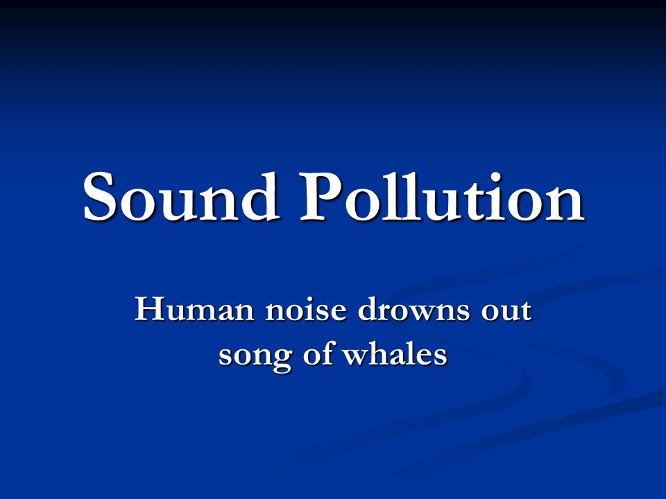 Human noise drowns out song of whales