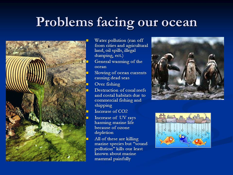 Problems facing our ocean