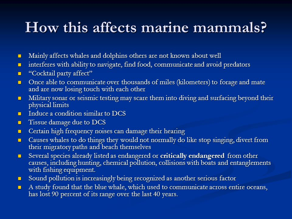 How this affects marine mammals