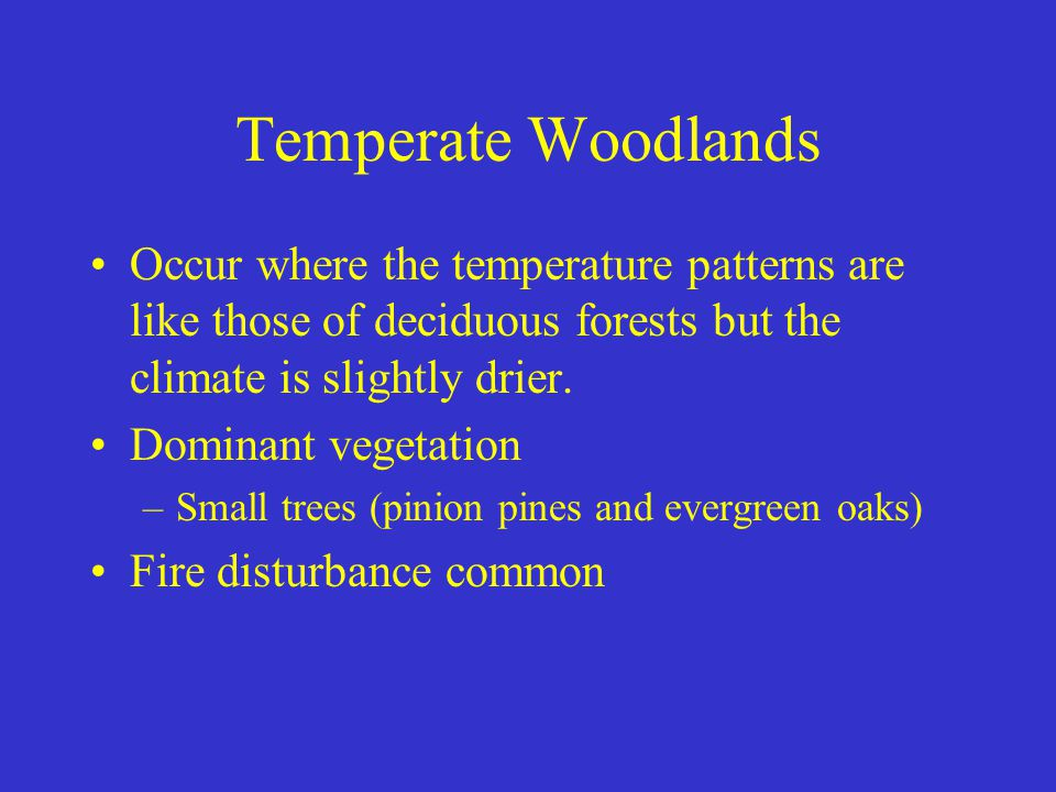 Temperate Woodlands Occur where the temperature patterns are like those of deciduous forests but the climate is slightly drier.