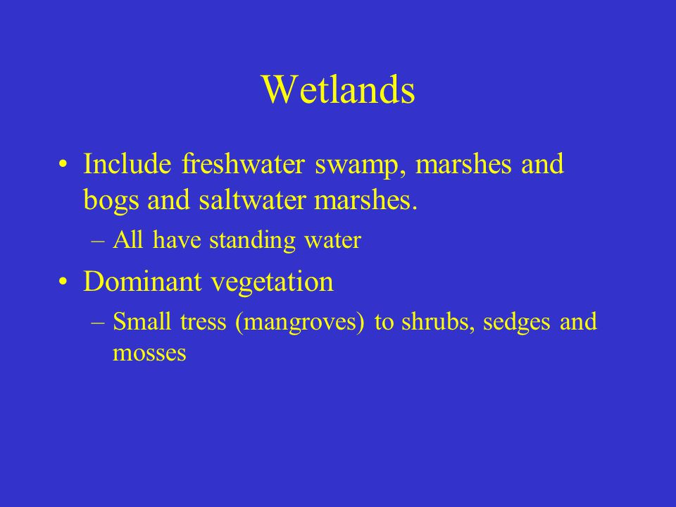 Wetlands Include freshwater swamp, marshes and bogs and saltwater marshes. All have standing water.