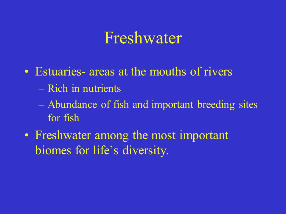 Freshwater Estuaries- areas at the mouths of rivers