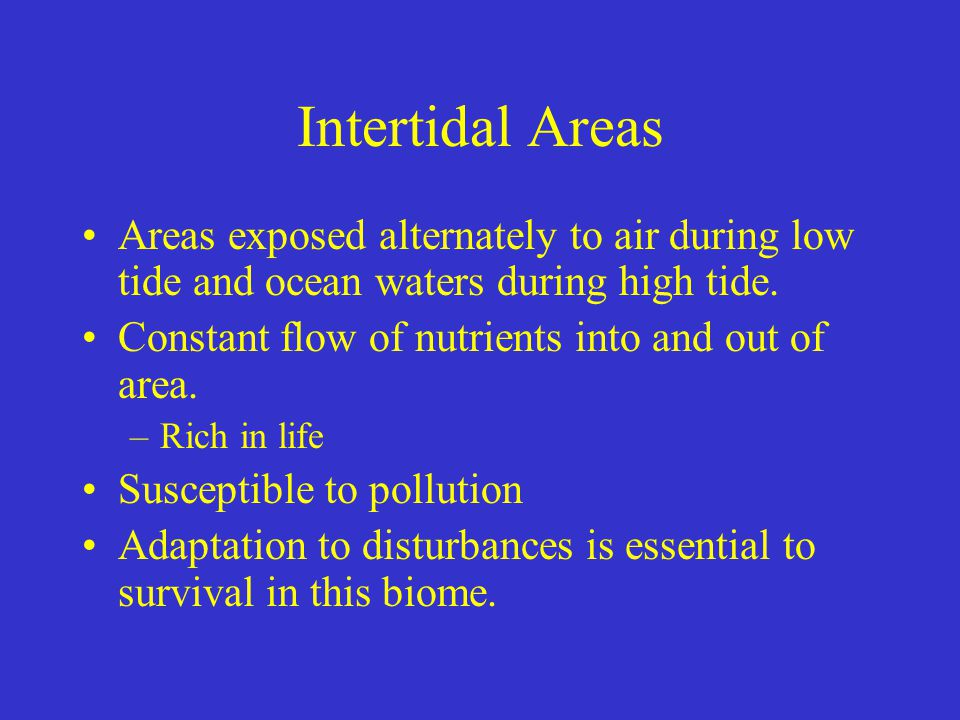 Intertidal Areas Areas exposed alternately to air during low tide and ocean waters during high tide.